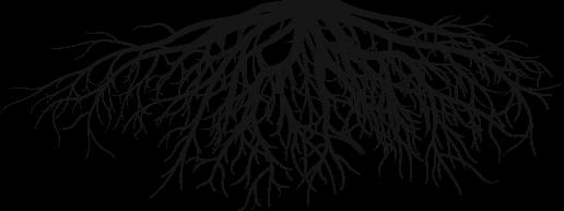 tree_header
